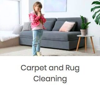 Floor & Upholstery Cleaning in Des Moines, Iowa from Dream Steam